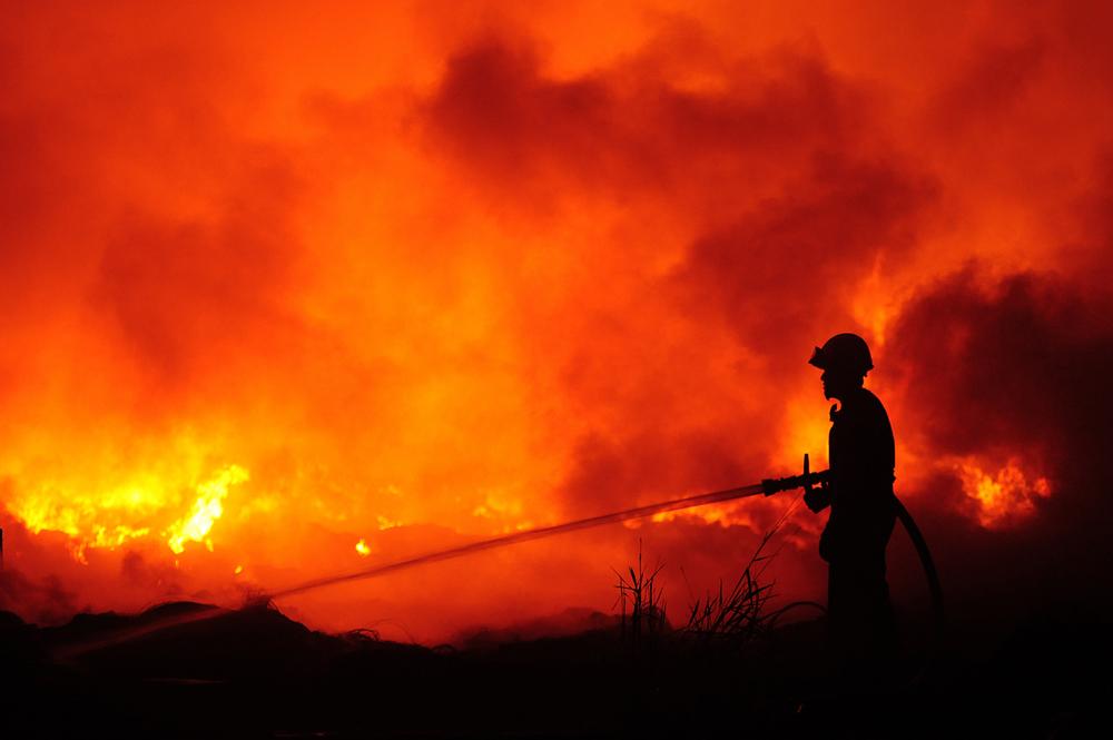 bushfire reduction